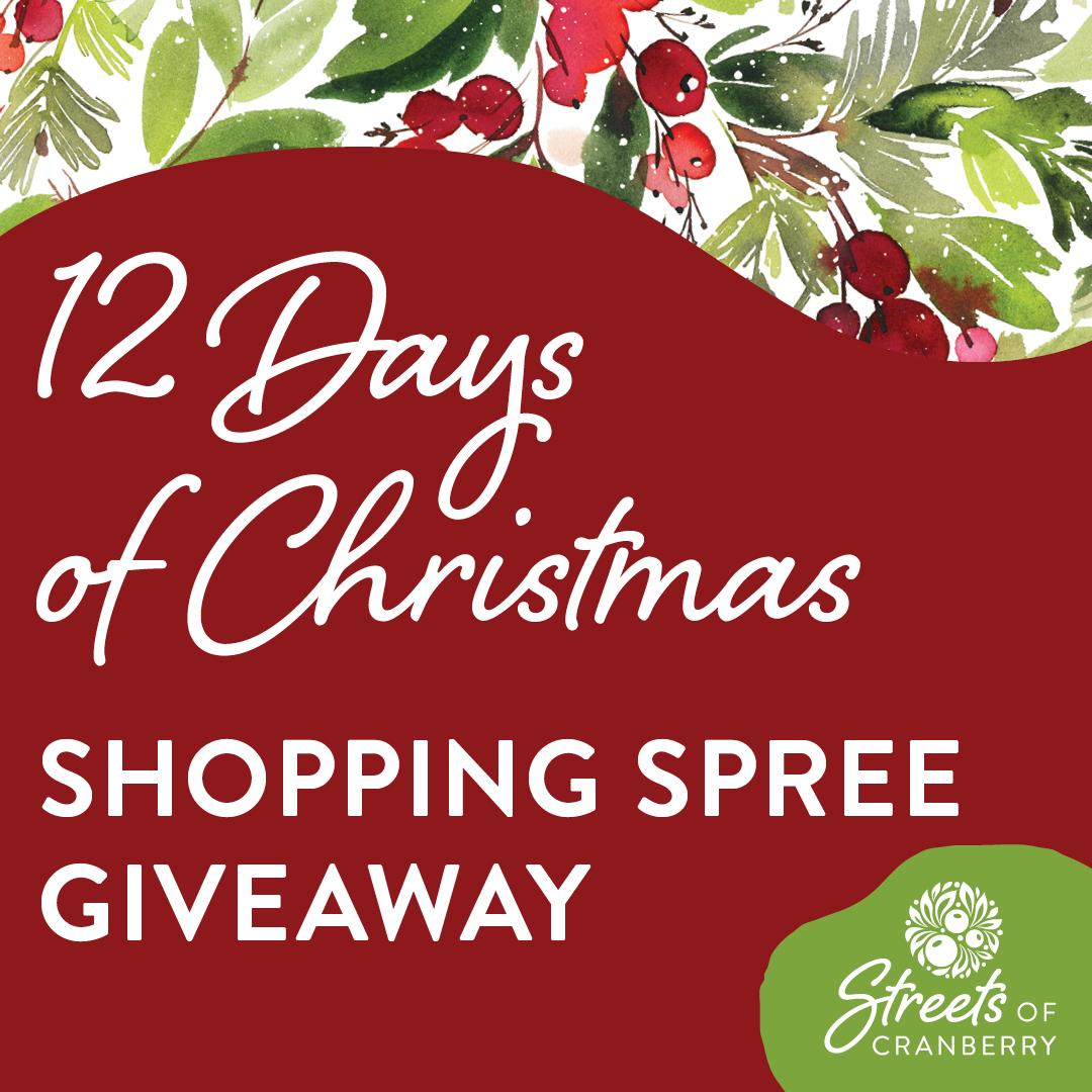 12 Days of Christmas • 12 Days of Giveaways + $1,000 Shopping Spree