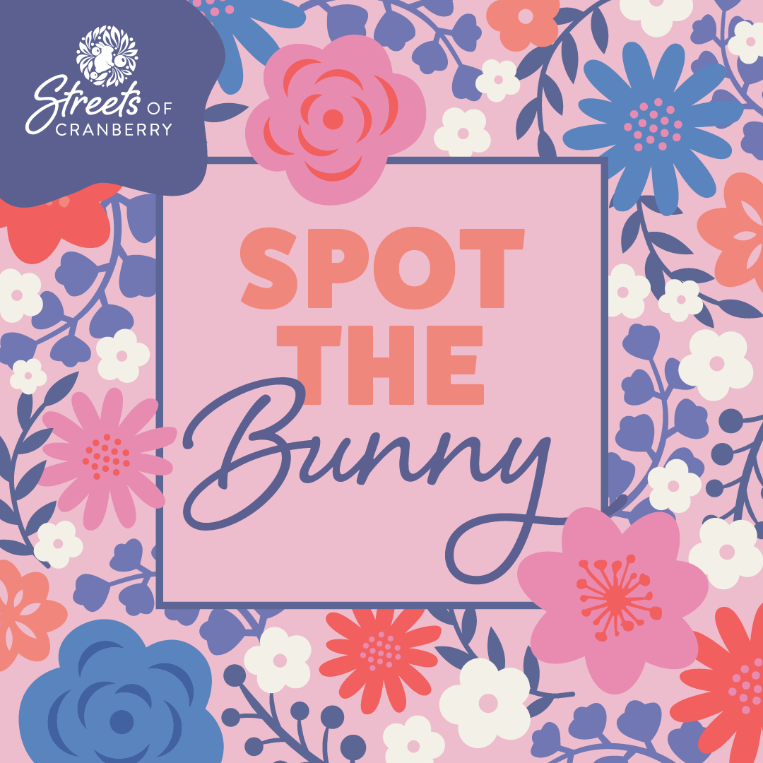 Spot the Bunny and Win!